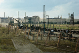 Soldiers Building Berlin Wall Photographic Print