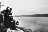 Alleged Image of Loch Ness Monster Photographic Print