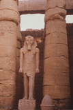 Egyptian Temple in Luxor Photographic Print by Philip Gendreau