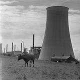Smokestack and Nearby Pasture Photographic Print by Charles Rotkin