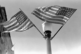 Flags on Lightpost Photographic Print by Russell Lee