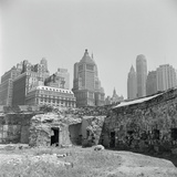 New Battery Park Photographic Print