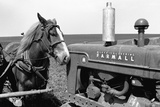 Horse and Tractor Photographic Print by John Vachon