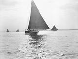 Skipjack Oyster Dredging on Chesapeake Bay Photographic Print