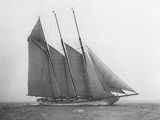 The Schooner Karina at Sail Photographic Print by Edwin Levick