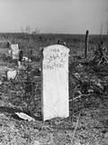 Abandoned Cemetery Photographic Print by Jack Delano