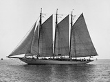 Auxiliary Schooner with Full Sails Photographic Print by Edwin Levick
