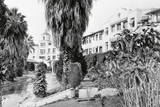 Exterior View of the Beverly Hills Hotel Photographic Print