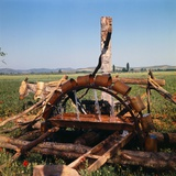Donkey at an Antiquated Irrigation Wheel Photographic Print by Philip Gendreau