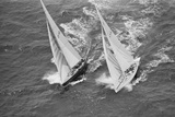 America's Cup Competitors Photographic Print by Alan Altman