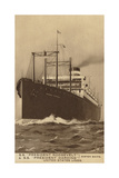 United States Lines Liner Ss President Roosevelt Giclee Print