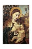 Madonna Breastfeeding Baby Jesus, Circa 1485 Giclee Print