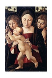 Italy, Asissi, Madonna and Child with Two Angels, 1495-1500 Giclee Print