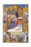 Madonna of the Magnificent: the Virgin Mary and the Saints Giclee Print