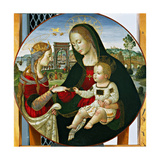 The Mystic Marriage of St. Catherine, 1502-03 Giclee Print by Baldassarre Peruzzi