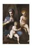 Madonna and Child with Infant Saint John the Baptist, 1516-1517 Giclee Print by Andrea del Sarto
