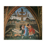 Susan at the Fountain or Susan and the Old Men, 1492 - 1494 Giclee Print by Bernardino di Betto Pinturicchio