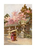 The Time of the Plum Blossoms Giclee Print by Ella Du Cane