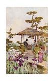 An Iris Garden Giclee Print by Ella Du Cane