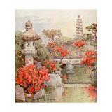 Azaleas, Kyoto Giclee Print by Ella Du Cane