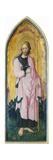 St Alessio Giclee Print by Bonifacio Bembo
