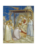 Adoration of the Magi Giclee Print by  Giotto di Bondone
