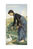 Young Woman Feeding a Duck, 1871 Giclee Print by Cristiano Banti