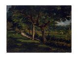 Rural Landscape Lámina giclée por Demetrio Cosola