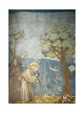 Italy, Umbria Region, Assisi, Basilica of San Francesco D'Assisi, Upper Basilica Giclee Print by  Giotto di Bondone