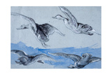 Flying Geese Giclee Print by Felix Bracquemond