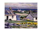 Cuil Phail Croft, the Two Crofts, Iona Giclee Print by Francis Campbell Boileau Cadell