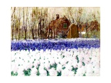 A Cottage and a Field of Hyacinths Giclee Print by George Hitchcock