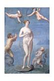 Venus, 1640 Giclee Print by Jacques Stella