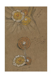 Studies of Rosettes, 1871-74 Giclee Print by James Abbott McNeill Whistler
