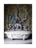 Bath Decorated with Animal Figures and a Composition of Fish in Relief Giclee Print by Niccolo Tribolo