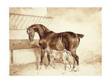 Mare and Foal Giclee Print by Théodore Géricault