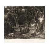 A Dell, Helmingham Park, Suffolk Giclee Print by John Constable