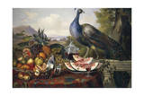 Still Life with Peacock Giclee Print by Luis Portu