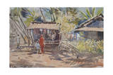 Goan Shop, 2008 Giclee Print by Tim Scott Bolton
