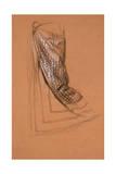 Drapery Study Giclee Print by Edward John Poynter