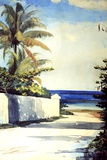 Road in Nassau, 1898-99 Giclee Print by Winslow Homer