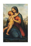 Madonna and Child or Madonna Del Giglio Giclee Print