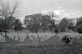 View of Arlington Cemetery Photographic Print