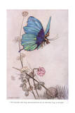 The Butterfly Took Wing Giclee Print by Warwick Goble