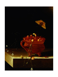 A Pot of Wild Strawberries on a Stone Ledge with a Butterfly by Adriaen Coorte Lámina giclée