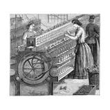 Illustration of the Manufacture of Cotton Thread Giclee Print by Stefano Bianchetti