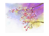 Flower Petals Giclee Print by  TongRo