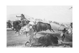 Buffalo Fighting with Indians Giclee Print