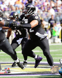 Haloti Ngata 2014 Action Photo