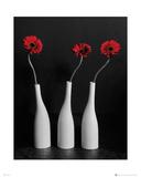 Flowers - Gerberas Bottles Posters